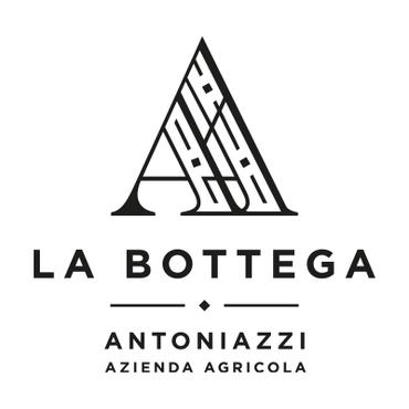 Bottega Antoniazzi